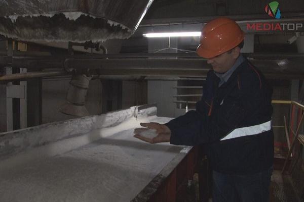 Лише один цукровий завод на Тернопільщині приступив до роботи (Відео)