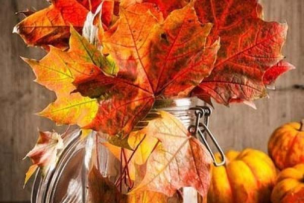 Осінь – вона не питає, осінь – вона приходить