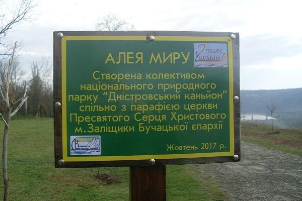 «Алея миру» над Дністром (Фото)