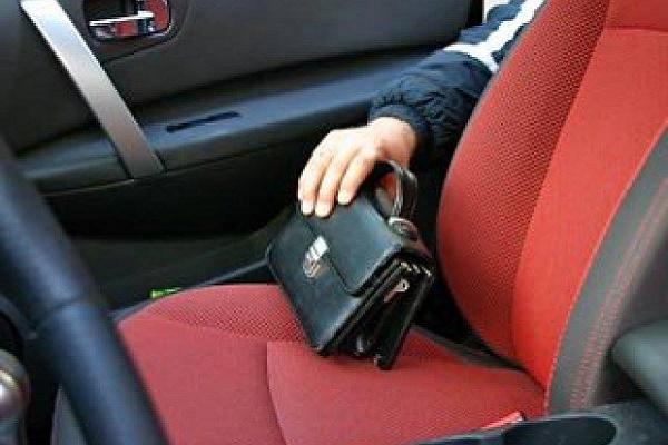 У Великих Гаях із салону авто вкрали сумку, в якій було 820 тисяч гривень (Відео)