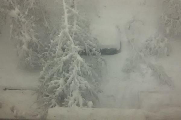 Минулого року в цей час у Тернополі «вирував» сніговий апокаліпсис – як це було (Фото)
