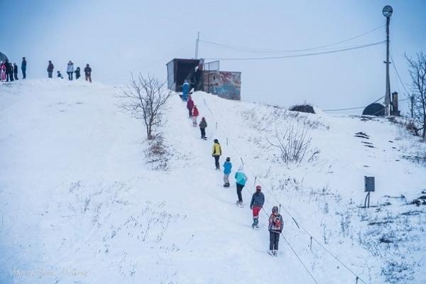Як Савич парк перетворюється на туристичну зимову родзинку Тернополя
