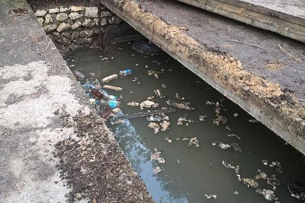 Фекалії з річки пливуть у тернопільський став (Відео)