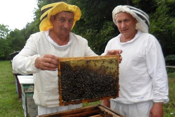 Збори бджолярів: об'єдналися заради спільної справи