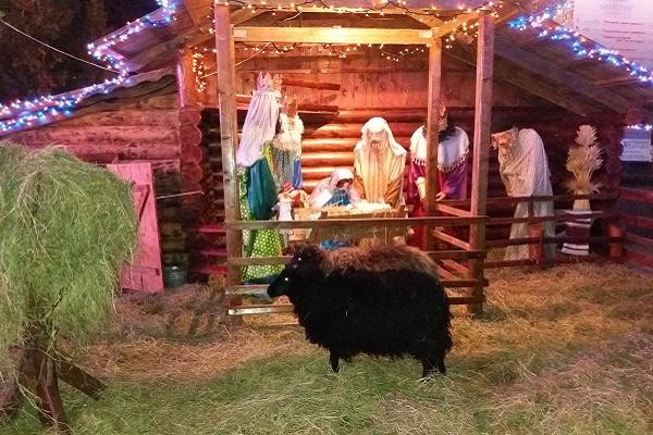 Діти з різних куточків області приїжджають до новорічної ялинки та Різдвяної шопки у центрі Тернополя