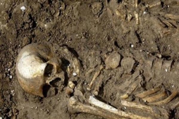 В Борщівському районі на приватному господарстві відкопали кістяки