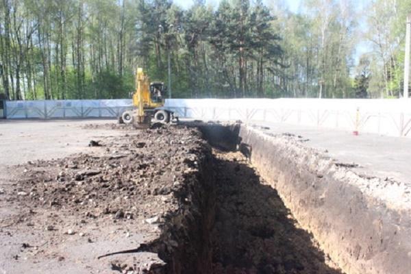 Тернополяни вимагають заборонити вирубування дерев і будівництво у парках