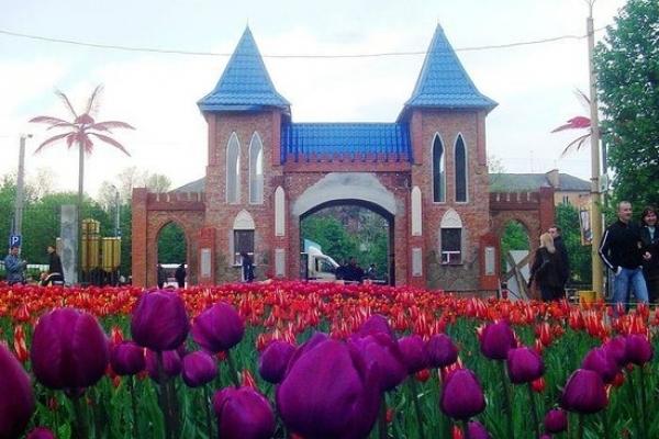 Квітуча Україна: куди поїхати в квітні