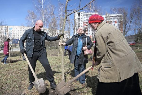 У парку Нацвідродження з'явились нові дерева