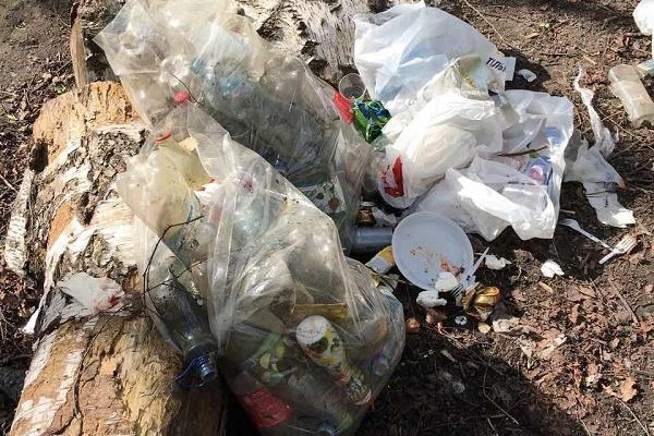 Студенти ТНПУ ім. В. Гнатюка назбирали в парку «Здоров'я» 18 пакетів сміття