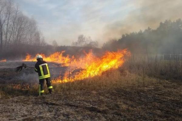 На Тернопільщині рятувальники тричі за одну добу гасили пожежу сухої трави