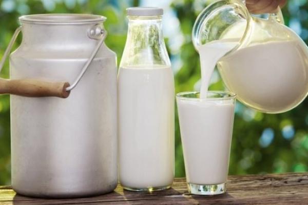 Аграрна Тернопільщина: Молоко звідусіль