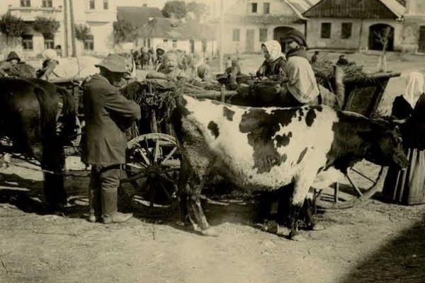 Невідомі Підгайці на столітніх фото