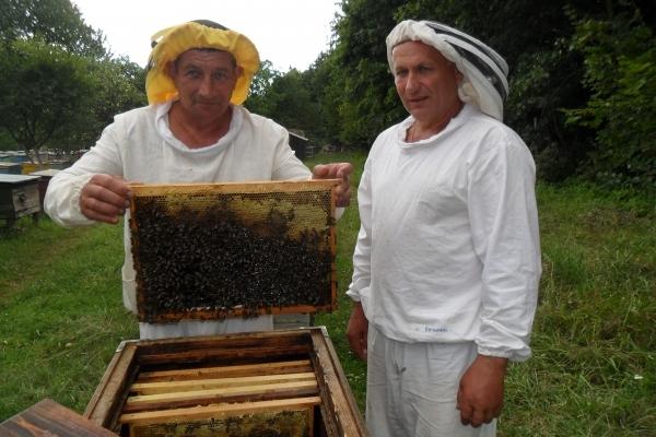 Аграрна Тернопільщина: Господар цілющої фабрики