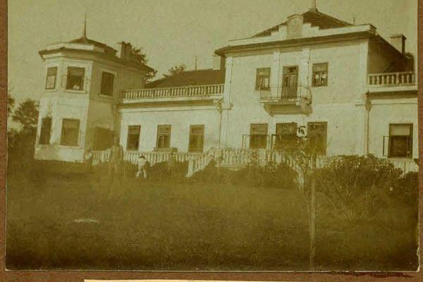 Невідомі фото палацу Дуніних-Борковських з села Городок