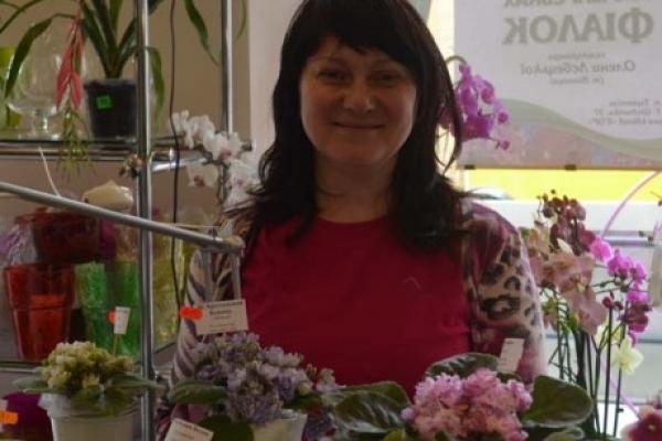 У Тернополі пройде виставка узамбарських фіалок