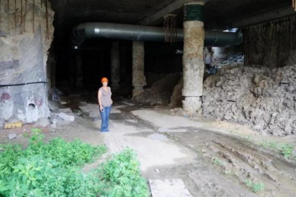 У Києві знайшли найдавніший живий організм (Фото)
