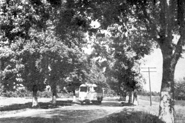 Кременець на фото 1969 року