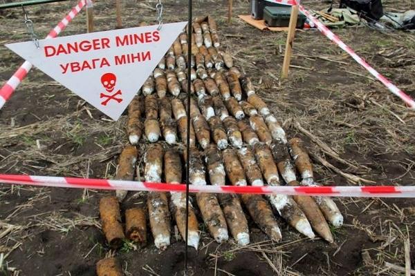 У Чортківському районі чоловік збирав гриби, а натрапив на снаряди