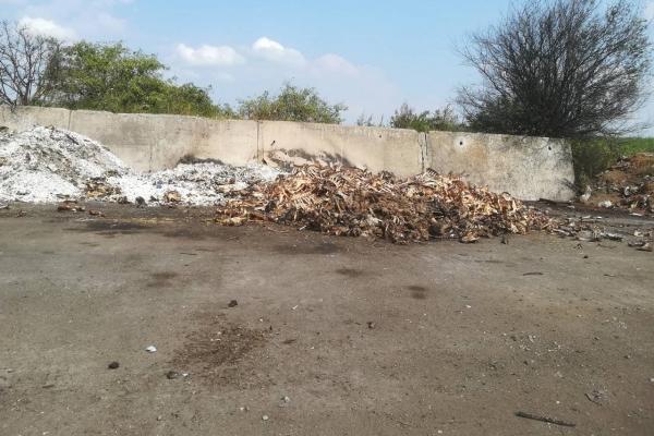 Кістки від забою тварин спалював директор підприємства у Тернопільському районі