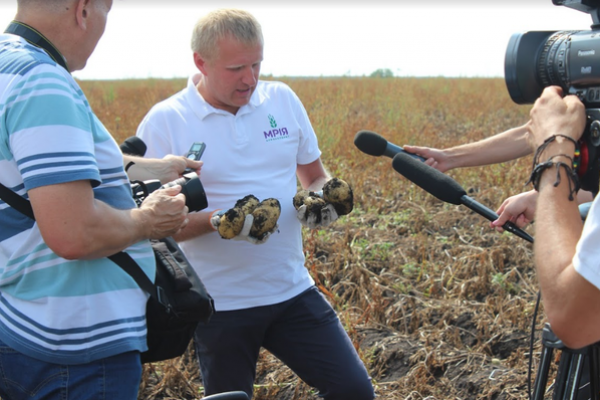 На Тернопільщині агрохолдинг «МРІЯ» розпочав збирати урожай картоплі