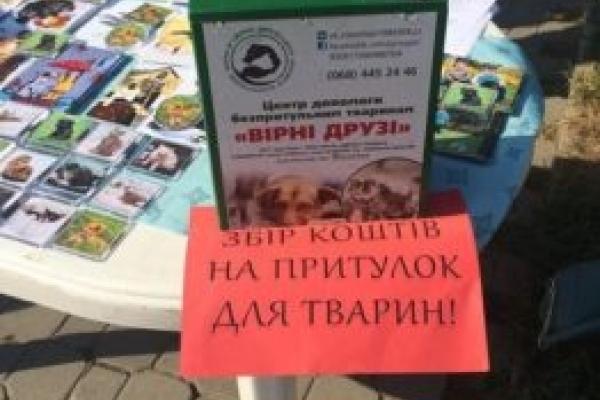 У Тернополі таємничий благодійник пожертвував на притулок для тварин 10000 гривень