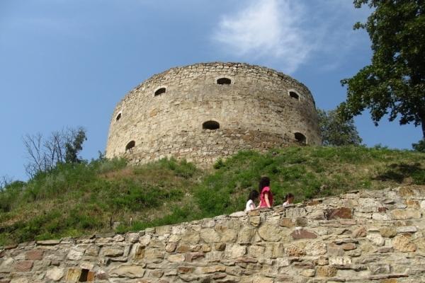 Один із найцікавіших замків Тернопільщини може стати туристичним брендом