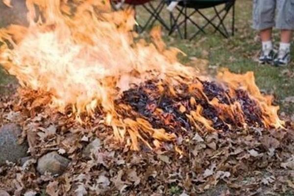 Тернополяни вимагають посилити контроль за несанкціонованим спаленням сміття та листя