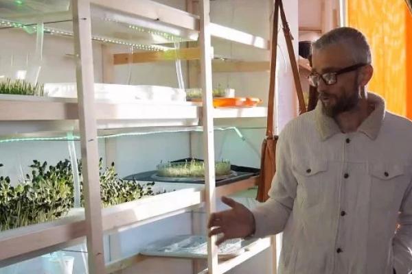 Двоє тернополян перетворили однокімнатну квартиру в багатоповерхівці на теплицю
