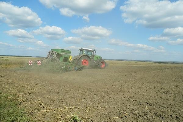 Аграрна Тернопільщина: Жито і молоко