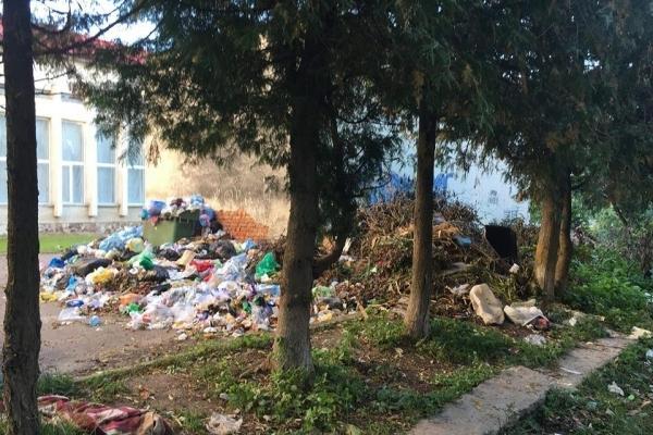 Гори сміття та антисанітарія: вулиці Бережан перетворюються на сміттєзвалища (Фото)