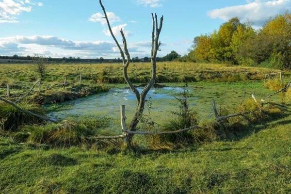 На Тернопільщині є унікальні озерця, площа яких вимірюється десятками метрів, а глибина - сотнями (Фото)