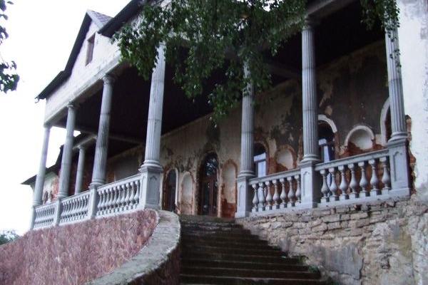 Історичну пам'ятку палац Гнєвоша у Золотому Потоці відновлює громада