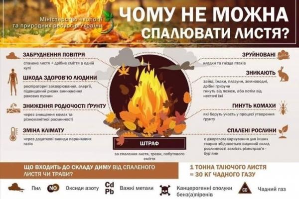 У Тернополі муніципальна поліція штрафуватиме осіб, які спалюють сухе листя