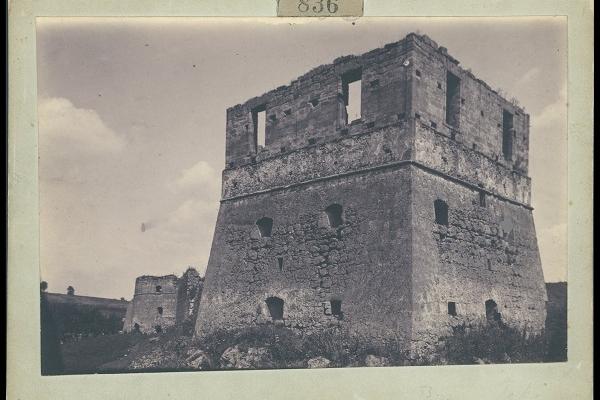 Токівський замок на ретро фото 1905 року