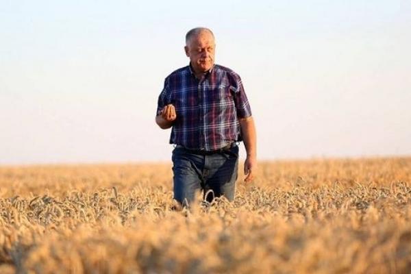 Аграрна Тернопільщина: У 2018 році трудівники АПК спрацювали на славу