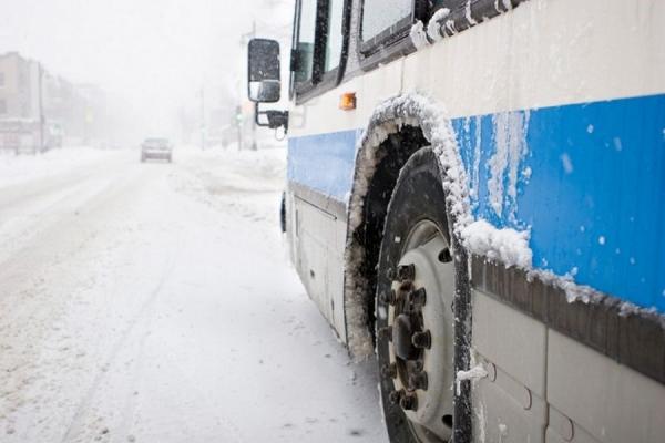 На Тернопільщині автобус переїхав жінку