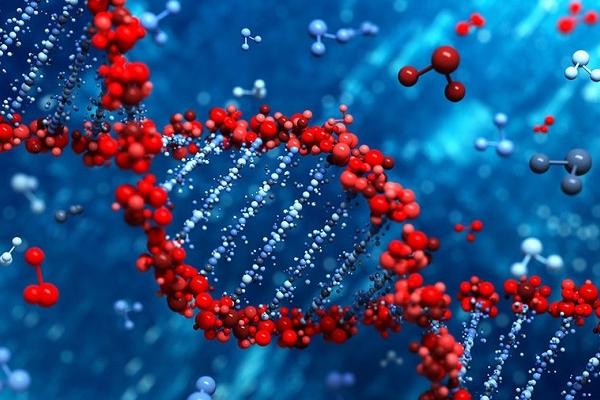 Сенсація в науковому світі! Бог залишив послання людині всередині його генома