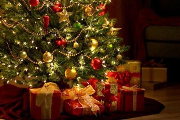 Відомі тернополяни показали свої новорічні ялинки (Відео)