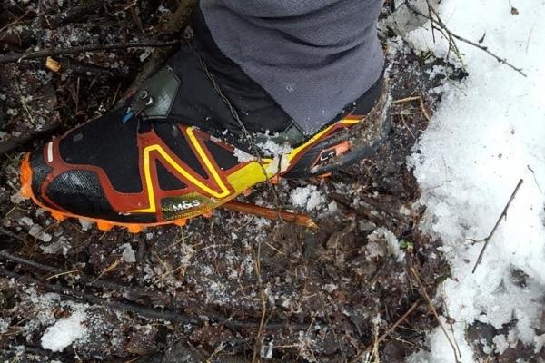 Тернопільський бігун потрапив у пастку для тварин, яку встановили браконьєри (Фото)