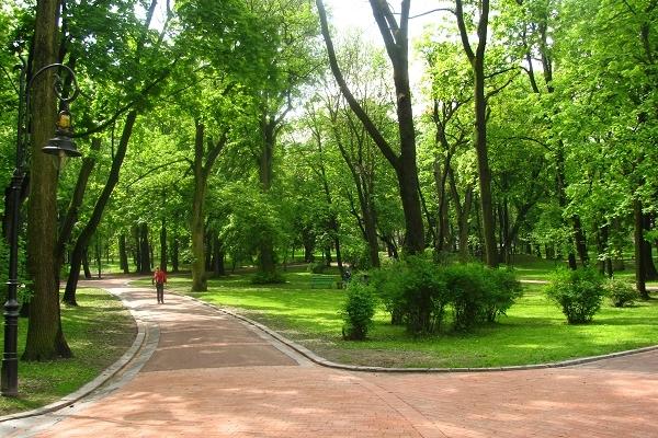 Тернополяни просять зберегти зелену зону по вулиці Живова