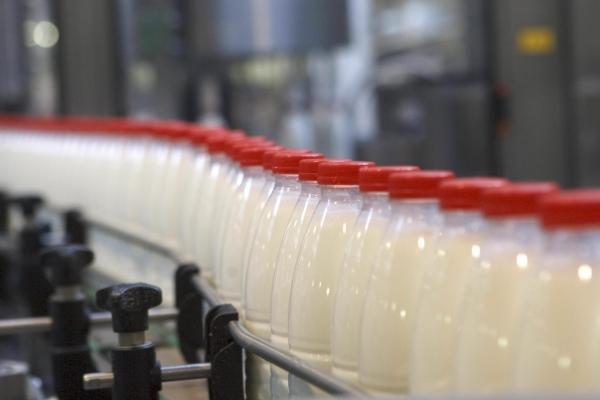 Молокозаводи на Тернопільщині вступили у змову?