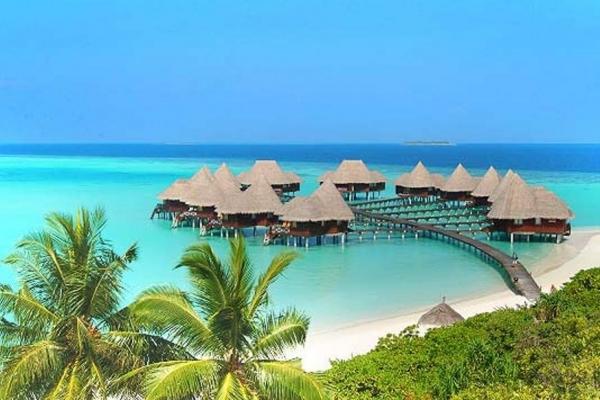 Дві чиновниці Бучанської міськради відпочивали в 5-зірковому готелі на Мальдівах