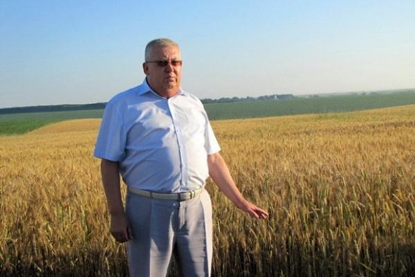 Аграрна Тернопільщина: у Скориках від молодих первісток щоденно надоюють 31-33 кг молока
