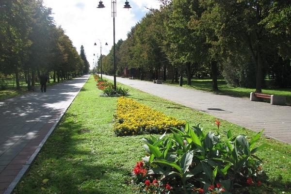 Тернополяни просять заборонити автомобільний рух по парку Національного відродження