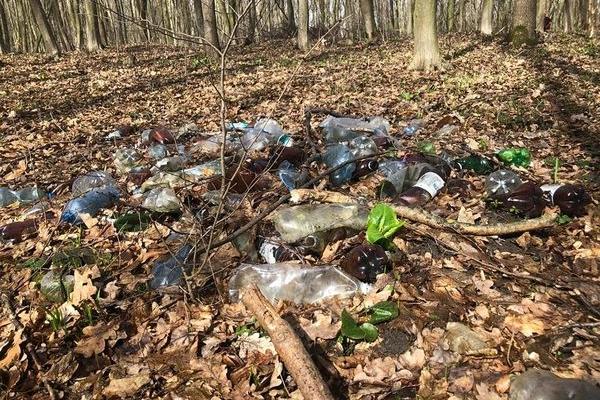 Закиданий сміттям весняний Кутківецько-Пронятинський ліс - тернополяни жахнулись та вийшли прибирати