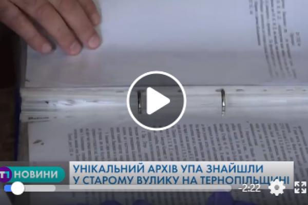 Унікальний архів УПА знайшли у старому вулику на Тернопільщині