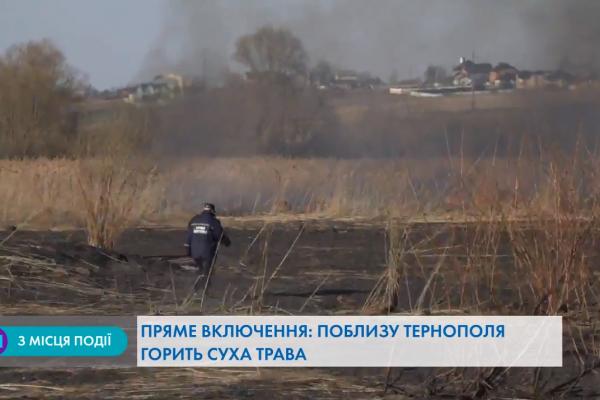 Поблизу Тернополя горить суха трава (Наживо)