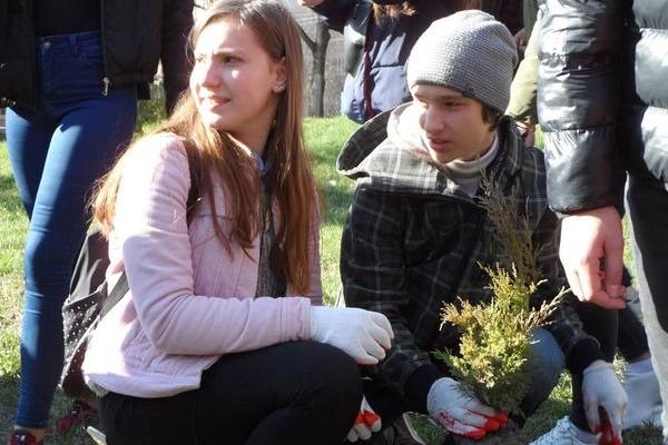 Висадка дерев об'єднала дитячі медійні команди Тернополя