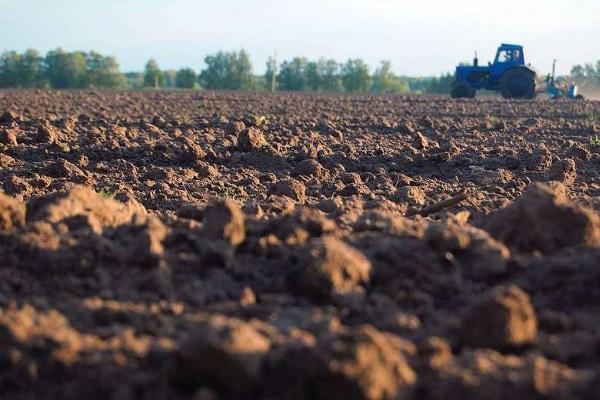 Представлено 4 варіанти відкриття ринку землі в Україні